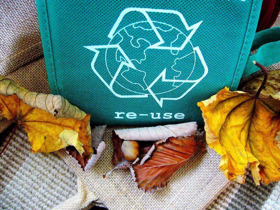 an image of a recycling bin and leafs